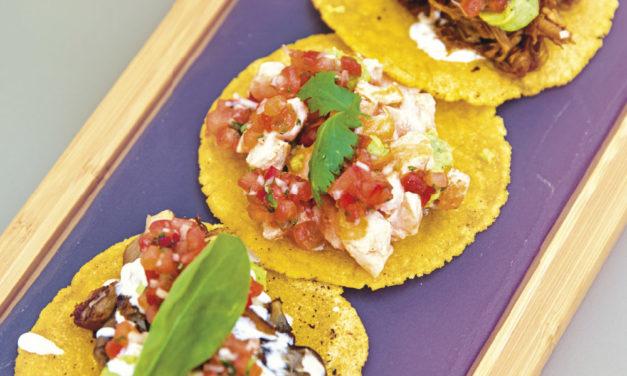 Tacos mit Pulled Pork, Lachsforelle & Austernpilzen